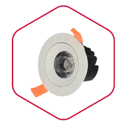 Integra Orient Downlight