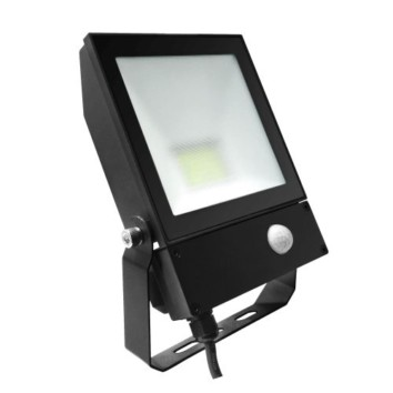 QT floodlight PIR